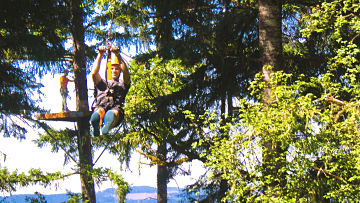 Picture Of Man Ziplining Across The Aerial Adventure Park - Tree to Tree Adventure Park