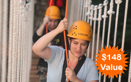 Tree to Tree Adventure Park's Zip Line Tour offers exhilarating zip lines, beautiful views, and friendly trained guides. Contact us to reserve your spot.