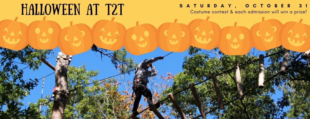 Halloween at tree 2 tree. Saturday, October 31st. Costume contest and each admission will win a prize.