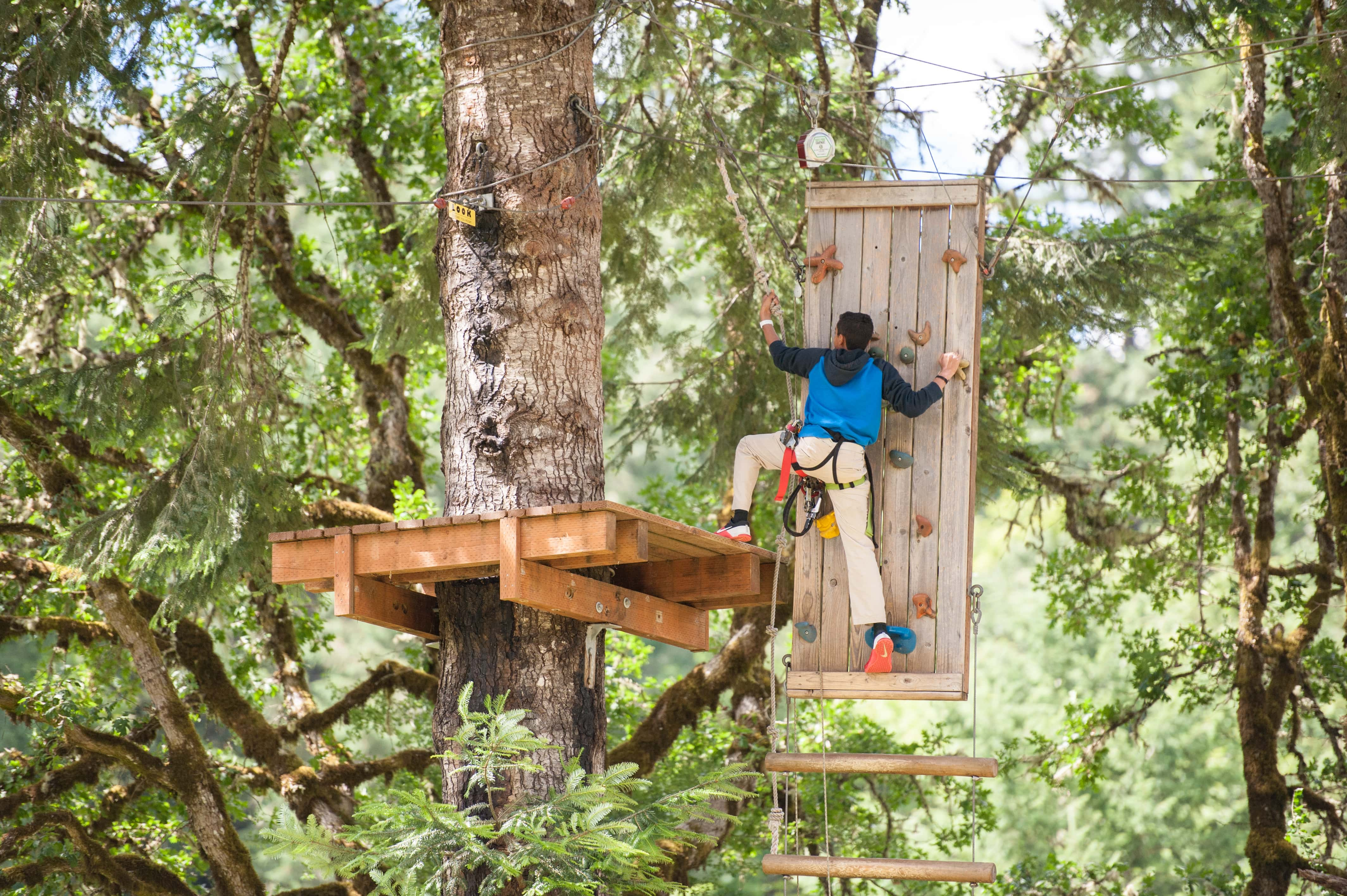 Tree Top Obstacle Course - Gaston OR - Tree to Tree Adventure Park